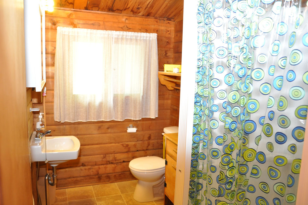 10-Bathroom with Shower Stall