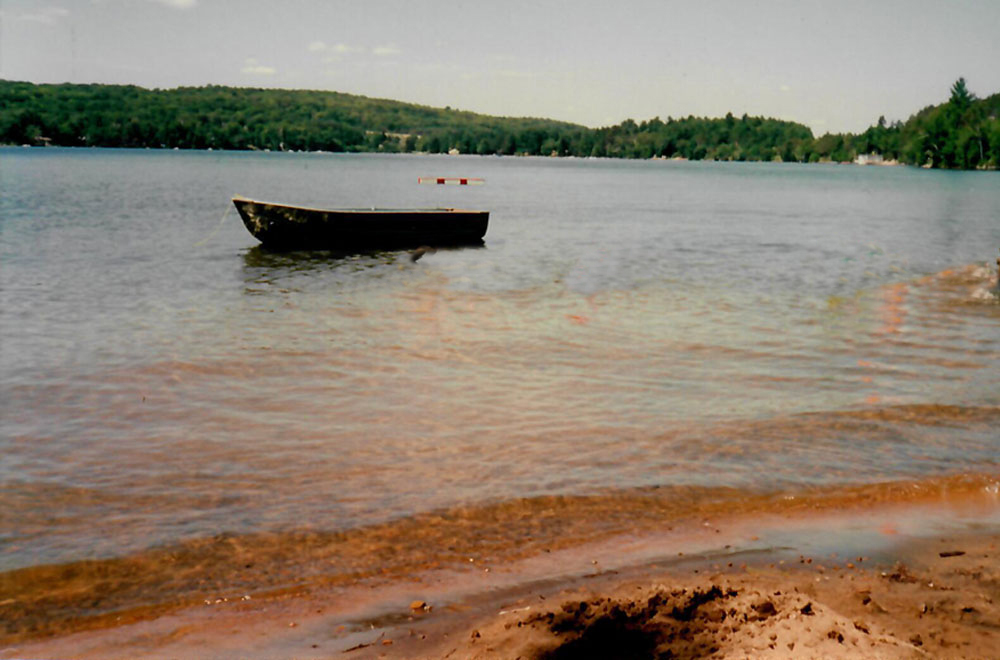 Haliburton Cottage - 12 Mile Lake - The Cumfy Cottage - Sand beach with shallow entry