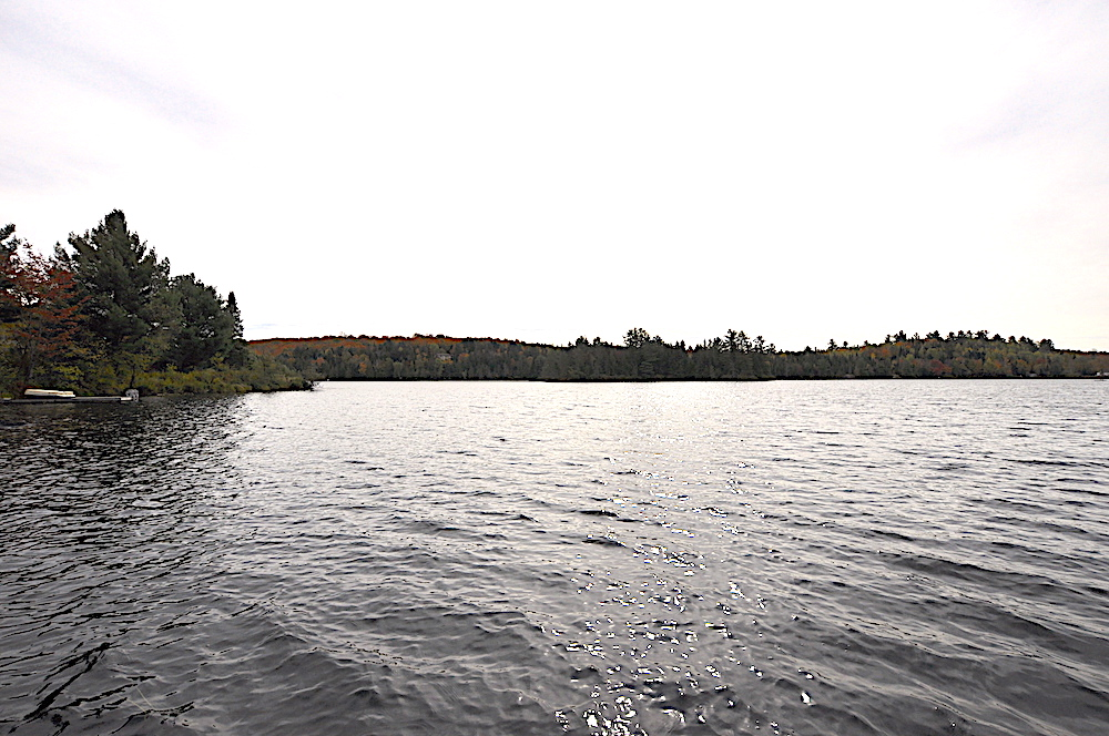 Brady Lake - White Pine Shore - view of the lake from the dock