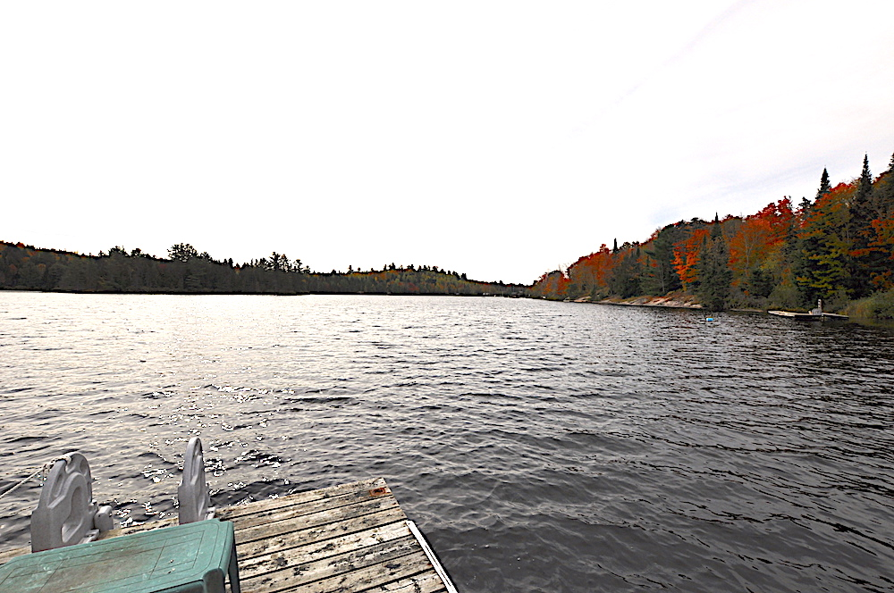Brady Lake - White Pine Shore - view to the right of the dock