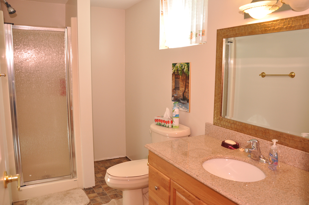 19-3-pc-bathroom-lower-level