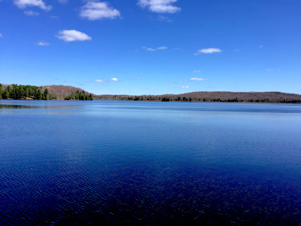 Blue Hawk Lake Blue Bell - Haliburton Cottage - Blue Waters of Hawk Lake
