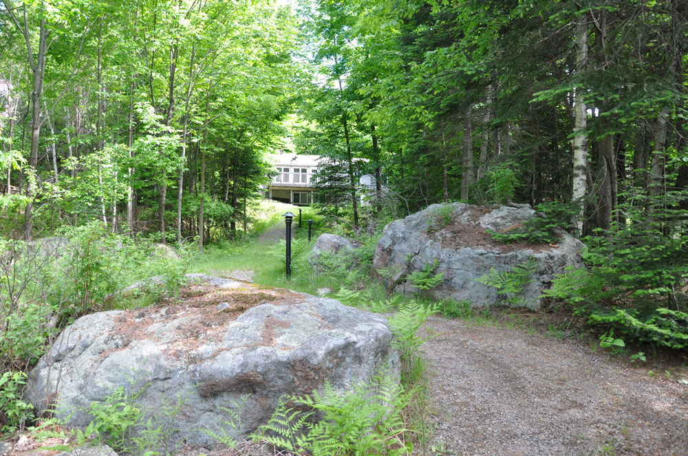 Haliburton Cottage - Soyers Lake Serenity - Path to Lake