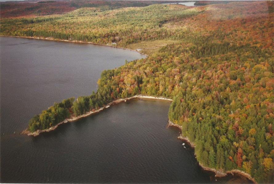 Haliburton Cottage - Kawagama Lake - Driftwood Bay - Aerial View