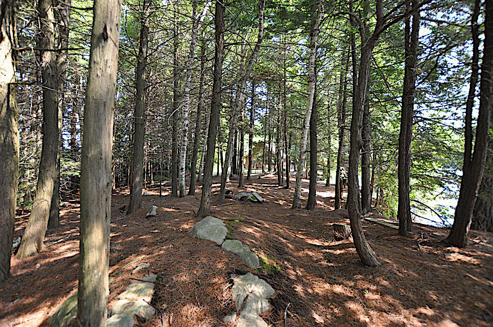 Haliburton Cottage - Kawagama Lake - Driftwood Bay - Path-from-the-point-to-the-cottage