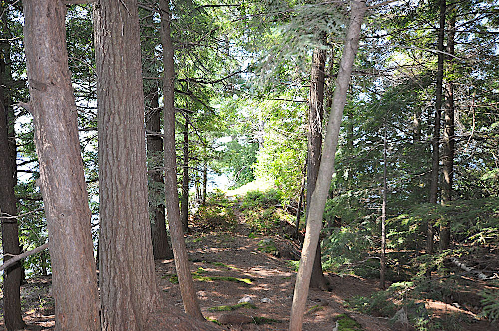 Haliburton Cottage - Kawagama Lake - Driftwood Bay - Path-to-the-point