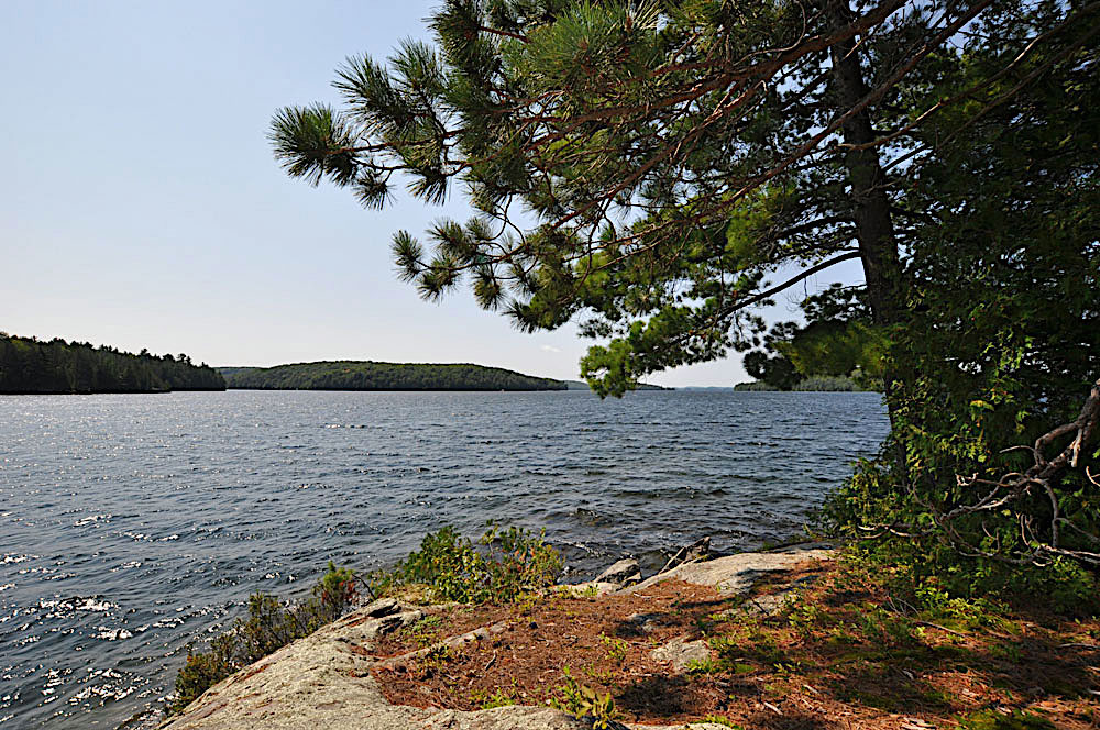 Haliburton Cottage - Kawagama Lake - Driftwood Bay - View-from-the-point