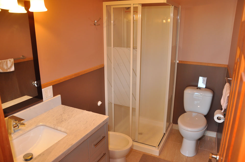 17-4pc upper level bathroom