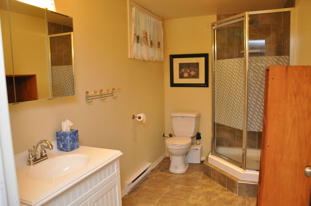 21-Bathroom-Lower-Level